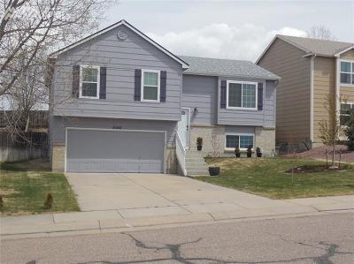 Colorado Springs Single Family Home For Sale: 6348 Zermatt Drive