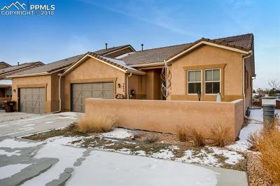 Colorado Springs Condo/Townhouse For Sale: 8488 Grand Peak Vista Point