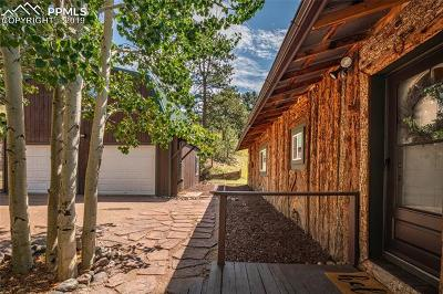 Woodland Park Single Family Home For Sale: 1021 Markus Road