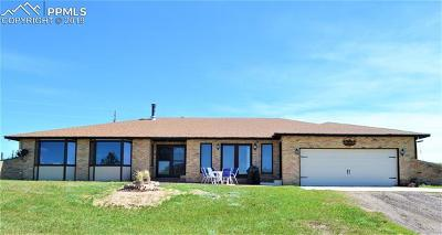 Single Family Home For Sale: 12850 Forest Green Drive