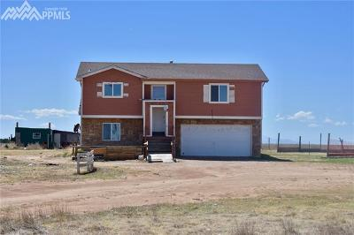 El Paso County Single Family Home For Sale: 39030 Jacobson Road