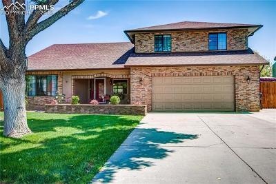 Pueblo Single Family Home For Sale: 198 Encino Drive