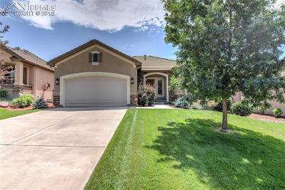 Single Family Home For Sale: 2633 Cinnabar Drive