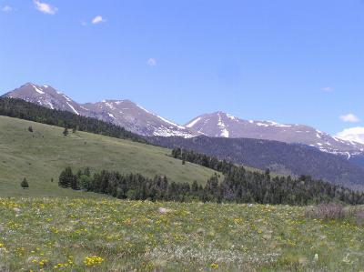 Westcliffe Residential Lots & Land For Sale: No Site Address