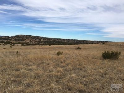 Beulah Residential Lots & Land For Sale: 6702 Waterbarrel Rd