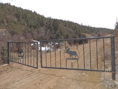 Canon City Residential Lots & Land For Sale: Tbd Backacres Rd