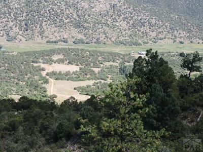 Canon City Residential Lots & Land For Sale: Tbd Canyon Terrace