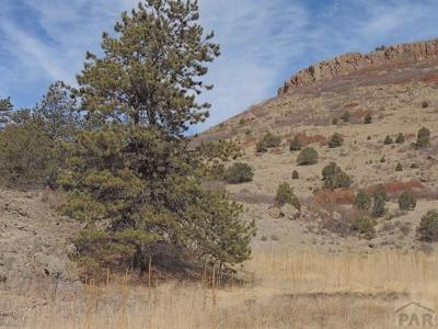 Canon City Residential Lots & Land For Sale: Tbd S Tallahasse Tr