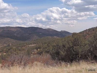 Canon City Residential Lots & Land For Sale: Tbd Century Rd