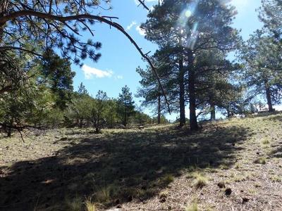 Westcliffe Residential Lots & Land For Sale: 181 Evening Star Dr.