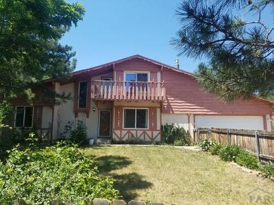 Colorado City Single Family Home For Sale: 5820 Reef Place