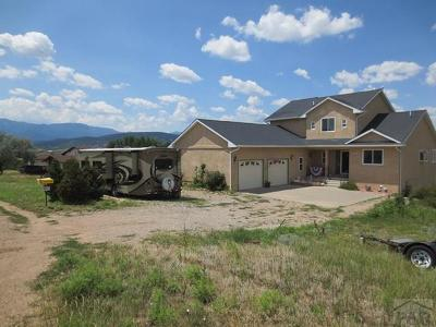 Colorado City Single Family Home For Sale: 4577 Cummings St