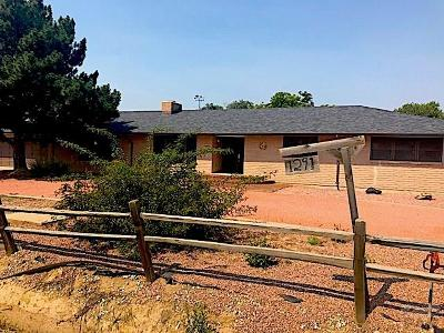 Pueblo Single Family Home For Sale: 1291 30th Lane