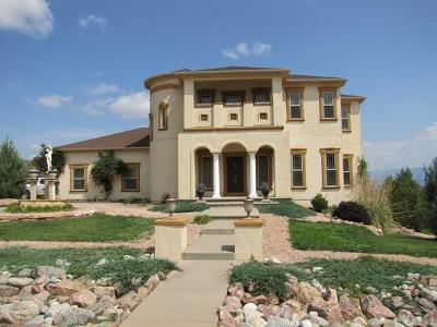 Canon City Single Family Home For Sale: 131 Eagle Crest Loop