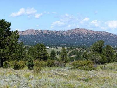 Westcliffe Residential Lots & Land For Sale: 737 Dilley Ranch Rd