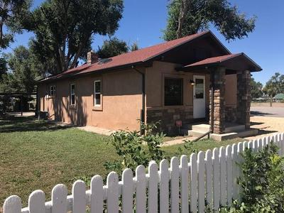 Pueblo Single Family Home For Sale: 1027 Gunnison St