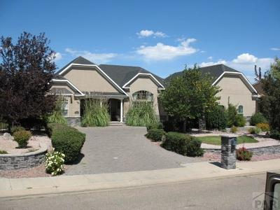 Pueblo Single Family Home For Sale: 5127 Mojave Dr