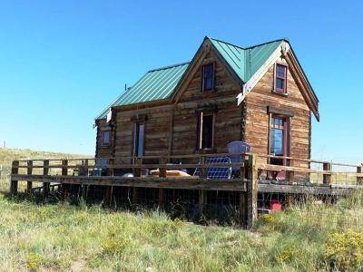 Westcliffe Single Family Home For Sale: 2005 Kit Carson Rd