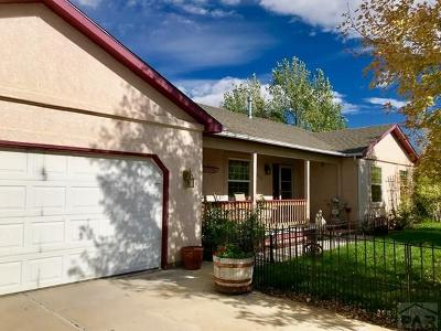 Pueblo Single Family Home For Sale: 6053 Muddy Creek Rd