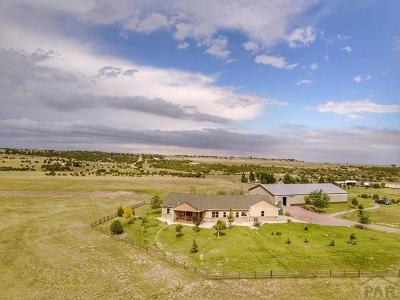 Colorado City Single Family Home For Sale: 8495 Crow Cutoff