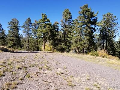 Canon City Residential Lots & Land For Sale: South T-Bar