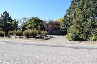 Pueblo Single Family Home For Sale: 315 La Vista Rd