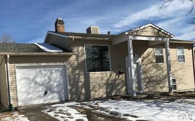 Pueblo Single Family Home For Sale: 138 Schirra Pl