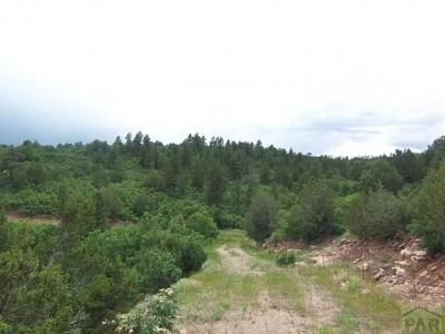 Beulah Residential Lots & Land For Sale: Tbd Savage Rd