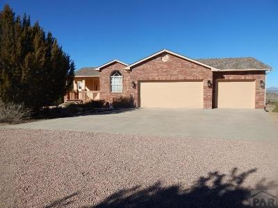 Canon City Single Family Home For Sale: 121 Wild Rose Dr