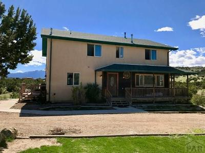Pueblo Single Family Home For Sale: 7764 South Lane