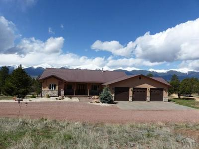 Westcliffe Single Family Home For Sale: 114 Merriam Turkey Rd