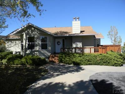 Colorado City Single Family Home For Sale: 5923 Lakeview Circle