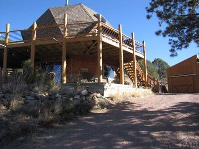 Canon City Single Family Home For Sale: 3535 Delilah Dr