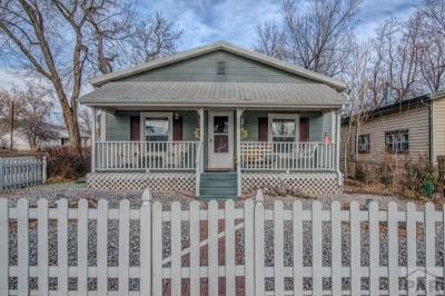 Canon City Single Family Home For Sale: 903 N Allison