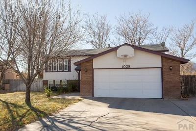 Canon City Single Family Home For Sale: 1028 Beech Ave