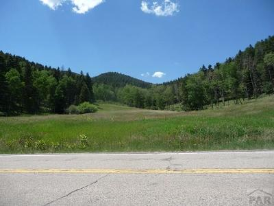 Rye Residential Lots & Land For Sale: Tbd Hwy 165