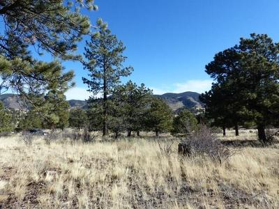 Westcliffe Residential Lots & Land For Sale: 3575 County Rd 271