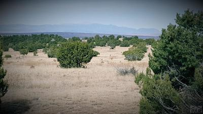 Pueblo Residential Lots & Land For Sale: Lot 33 Reno Rd
