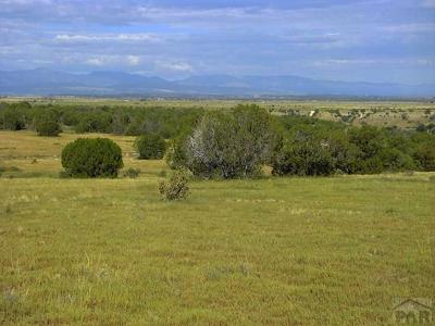 Pueblo Residential Lots & Land For Sale: Lot 26 Reno Rd