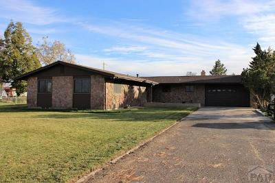 Pueblo Single Family Home For Sale: 29326 County Farm Rd