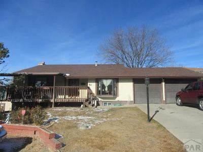 Pueblo Single Family Home For Sale: 2115 Rangeview Dr