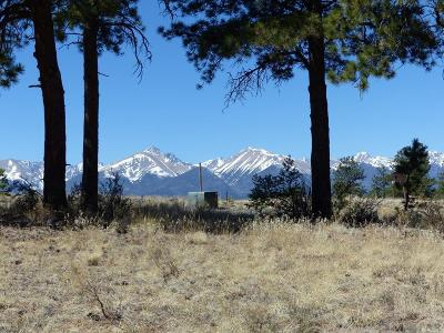 Westcliffe Residential Lots & Land For Sale: 551 Wyandot Trail