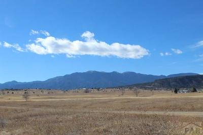 Colorado City Residential Lots & Land For Sale: 4127 Andrew Dr