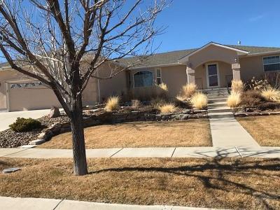 Pueblo Single Family Home For Sale: 3213 Lodi