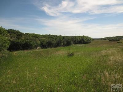 Colorado City Residential Lots & Land For Sale: 5157 Antoinette Lane