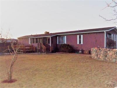 Canon City Single Family Home For Sale: 833 Robbie Lane