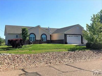 Colorado City Single Family Home For Sale: 4746 S Santa Fe Dr