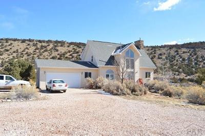 Canon City Single Family Home For Sale: 300 County Rd 69