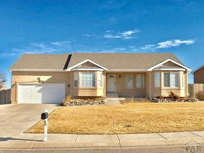 Pueblo Single Family Home For Sale: 3400 Modesto Dr
