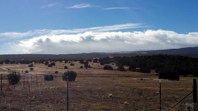 Pueblo Residential Lots & Land For Sale: Tbd Soda Creek Rd